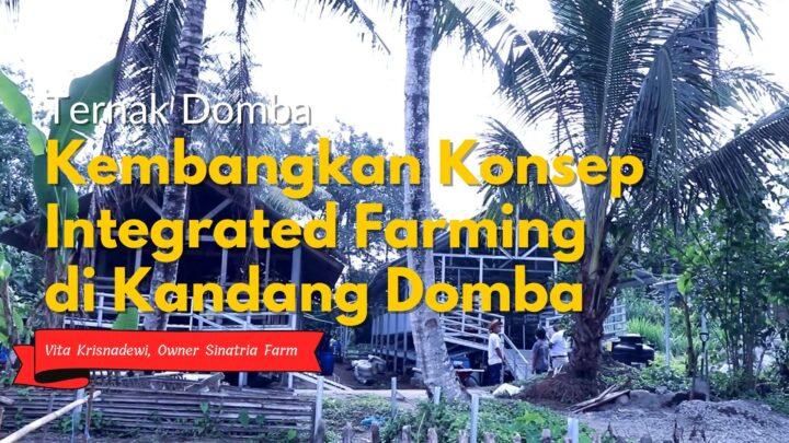 Kedepan, Kembangkan Konsep Integrated Farming di Kandang Domba